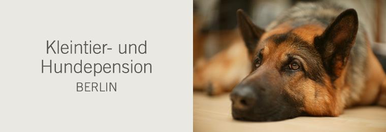 Kleintier- und Hundepension Berlin