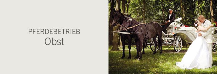 Pferdebetrieb Obst
