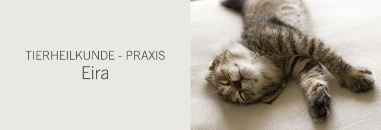 Tierheilkunde - Praxis - Eira