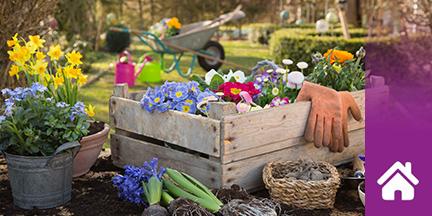 Holzkiste mit Blumen und Gärtnerutensilien
