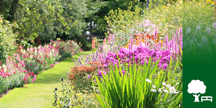Blick in Garten mit Blumenrabatten