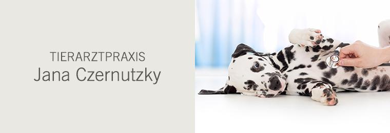 Tierarztpraxis Jana Czernutzky